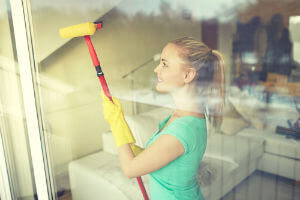 Window Cleaning Company Arlington